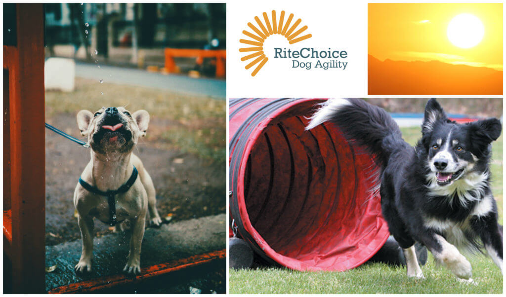 RiteChoice Ducting Dog Agility Tunnels